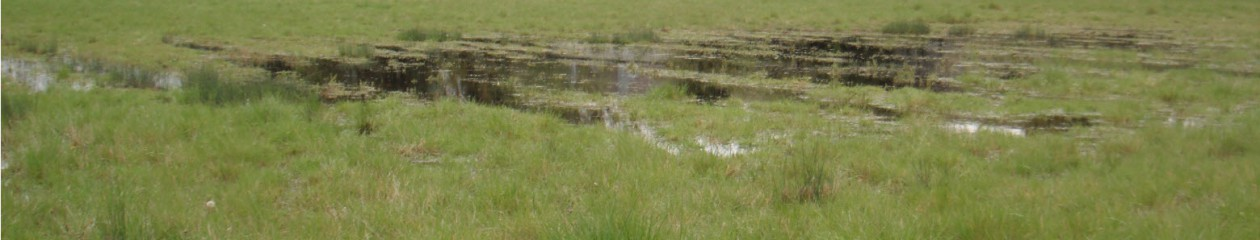 cropped-Waterlogged-land.jpg