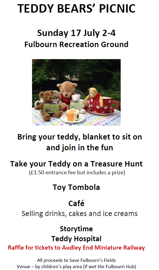 Teddy Bears Picnic large